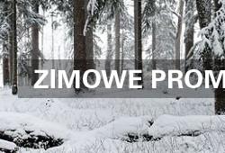 ZIMOWA PROMOCJA STIHL 2016!!!